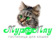Гостиница для кошек и котов «Мур-Да-Мяу»