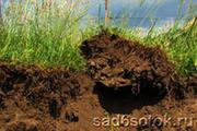 Земля плодородная и торфяная, грунт, чернозём.