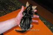Очаровательный бенгальский котенок ищет хозяев