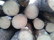 Продаю лес сухостой кругляк,  пиловочник с доставкой.