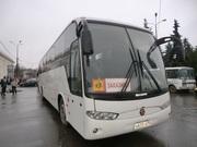 пассажирские перевозки автобусами от6 до 53мест