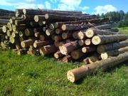 рабочие в лес нужны