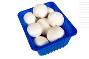 Лотки для грибов оптом от производителя.