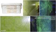 Светящиеся материалы-краски,  штукатурки